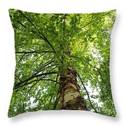 Good For The Soul Throw Pillow