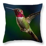 Good Friday Visitor Throw Pillow