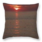 Good Morning Ducks Throw Pillow