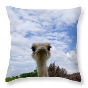Good Morning From Tennessee Throw Pillow
