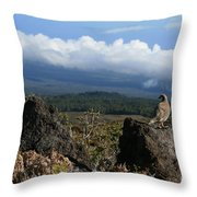 Good Morning Maui Throw Pillow