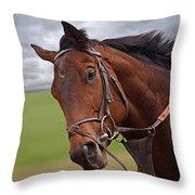 Good Morning - Racehorse On The Gallops Throw Pillow