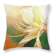 Good Morning Starshine Throw Pillow