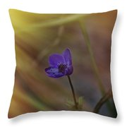 Good Morning Sunshine On Blue Throw Pillow