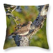 Good Mourning Dove By H H Photography Of Florida Throw Pillow