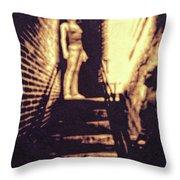 Good Neighbors  Throw Pillow by Bob Orsillo