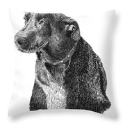 Good Old Charlie Throw Pillow