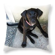 Good Puppy Throw Pillow