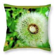 Good Wishes Throw Pillow