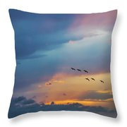 Goodbye To The Day Throw Pillow