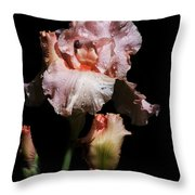 Goodnight Kiss Iris  Throw Pillow