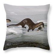 Goose For Lunch-signed-#1133 Throw Pillow