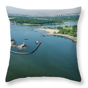 Goose Island Throw Pillow
