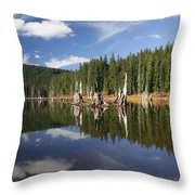 Goose Lake Throw Pillow