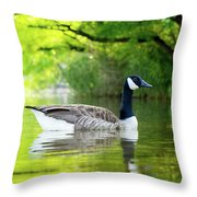 Goose Lake Throw Pillow