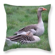 Goose Lookout Throw Pillow