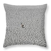 Goose On Lake August 27 2015 Throw Pillow