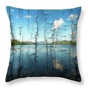 Goose Pond Reflection Throw Pillow