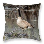 Goose Posing Throw Pillow