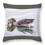 Goose Swimming Throw Pillow