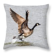 Goose Takeoff Throw Pillow