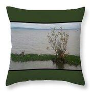 Goose Watch Throw Pillow