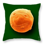 Gooseberry Pollen, Sem Throw Pillow