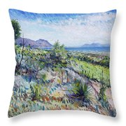 Gordons Bay Western Cape South Africa Throw Pillow