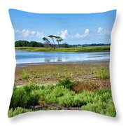 Gordons Pond At Cape Henlopen State Park - Delaware Throw Pillow