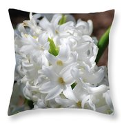 Goregeous White Flowering Hyacinth Blossom Throw Pillow