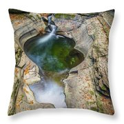 Gorge Trail In Autumn Watkins Glen Throw Pillow