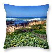 Gorgeous Asilomar Throw Pillow