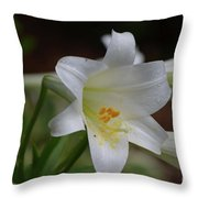 Gorgeous Blooming White Lily With Yellow Pollen On It's Stamen Throw Pillow
