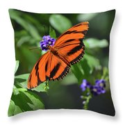 Gorgeous Close Up Of An Oak Tiger Butterfly In Nature Throw Pillow