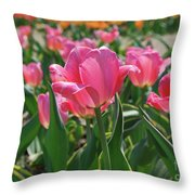 Gorgeous Field Of Flowering Pink Tulips In Bloom Throw Pillow