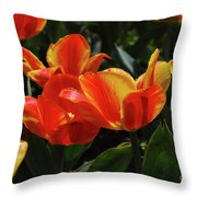 Gorgeous Flowering Orange And Red Blooming Tulips Throw Pillow