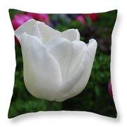 Gorgeous Flowering White Tulip Flower Blossom Throw Pillow