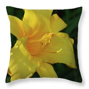 Gorgeous Flowering Yellow Daylily Blooming In A Garden Throw Pillow
