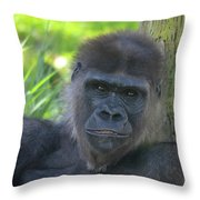 Gorgeous Gorilla Throw Pillow