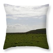 Gorgeous Grass Field With Clouds In Ireland Throw Pillow