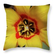 Gorgeous Look At The Center Of A Yellow Tulip Throw Pillow