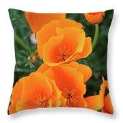Gorgeous Orange California Poppies Throw Pillow