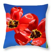 Gorgeous Red Tulips. Throw Pillow