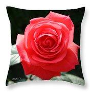Gorgeous Rose Throw Pillow