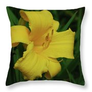 Gorgeous Yellow Daylily In A Garden Blooming Throw Pillow