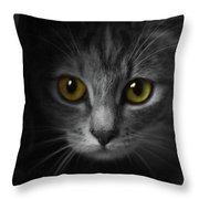 Gorgeous Yellow-green Eyes Cat Throw Pillow