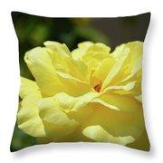 Gorgeous Yellow Rose Throw Pillow