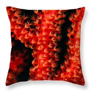 Gorgonian Coral Throw Pillow
