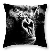 Gorilla Canvas Print, Photographic Print, Art Print, Framed Print, Greeting Card, Iphone Case, Throw Pillow by David Millenheft