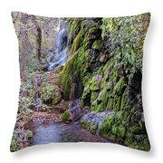 Gorman Falls At Colorado State Park - San Saba Texas Hill Country Throw Pillow